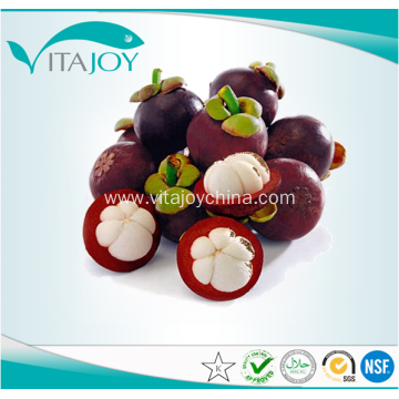 Mangosteen Fruit Powder Extract with Polyphenols 50%