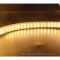 De Buena Calidad SMD2835 AC220V LED tira impermeable