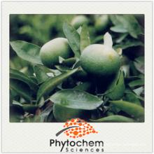 Citrus Aurantium Extract Bitter Orange Extract 98% Hesperidin 98% Bioflavonoids