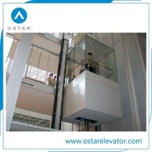 Group Control Panoramic Elevator Observation Lift with Sightseeing Glass