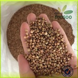 2014 Crop Certified Organic Roasted Buckwheat                                                                         Quality Choice