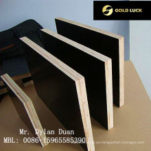 Tablero de madera resistente al desgaste y resistente a la alcalinidad (20 mm)