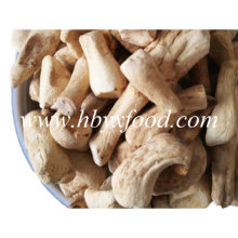 Fábrica fornecem atacado desidratado shiitake cogumelo perna