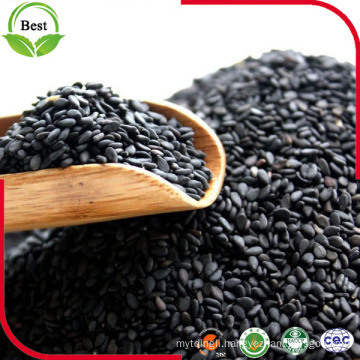 Wholesaler Raw Black Sesame Seeds