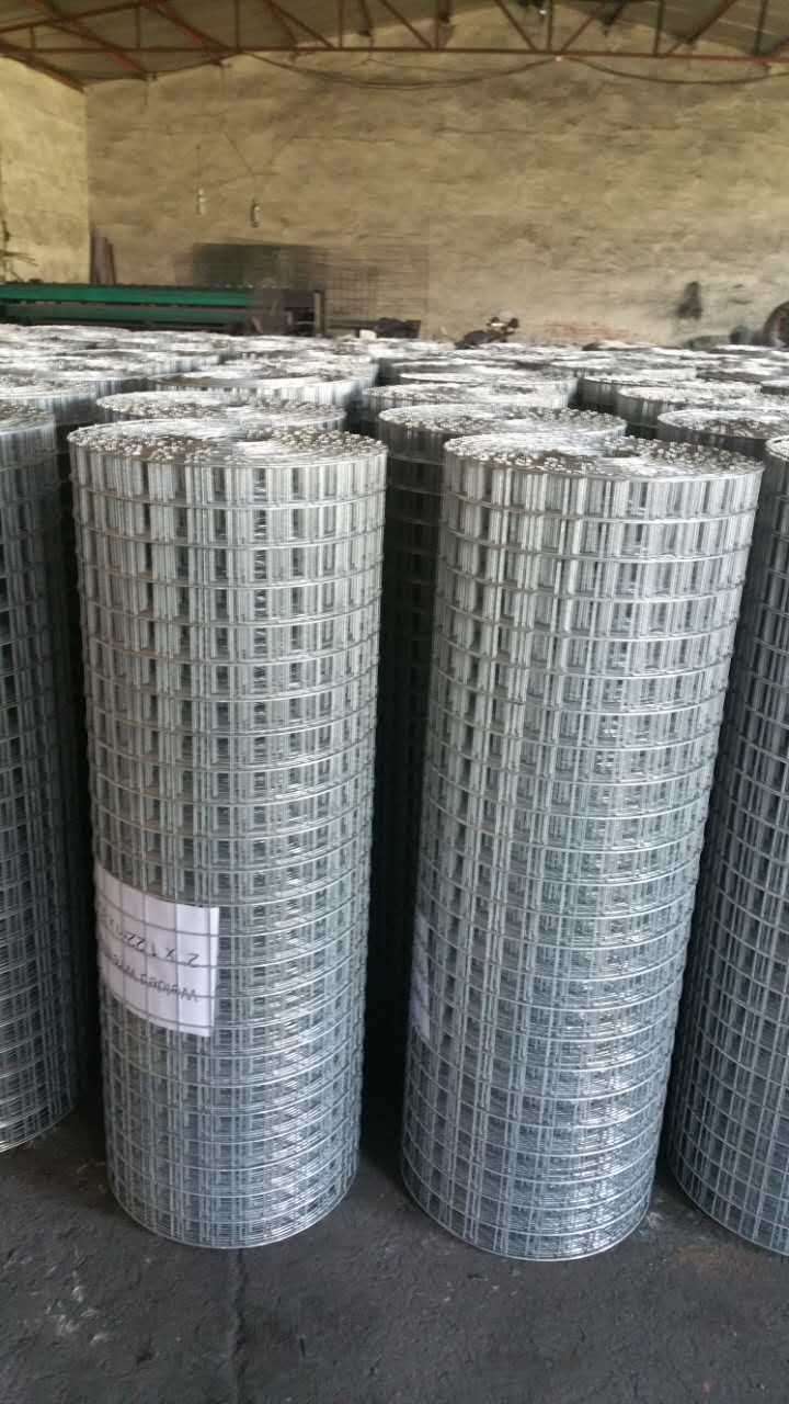 Welded Mesh 30m roll