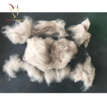 100% Pure Dehaired Merino Sheep Wool White Cashmere Fiber