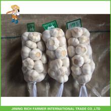 Свежий стиль Новый урожай свежий чеснок Чистый белый чеснок 5.0cm