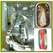 Máquina de atún enlatado de acero inoxidable automático completo