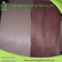 1,5-5,0mm Samll Größe Tür Größe Bintangor Sperrholz Bintangor Tür Haut
