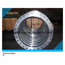 ANSI Größere Größe RF Forged Ring Carbon Stahl Flansch