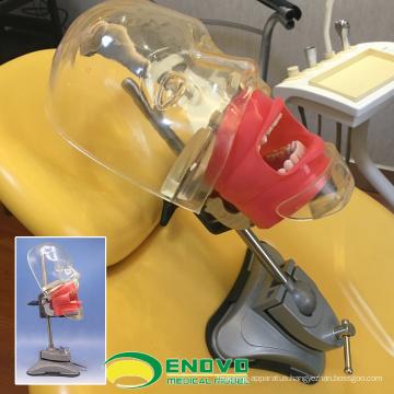DENTAL02(12559) Teaching Simple Phantom Dental Simulator Unit Head