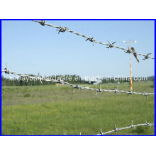 Best Selling Galvanized /PVC Coated Barbed Wire for Security