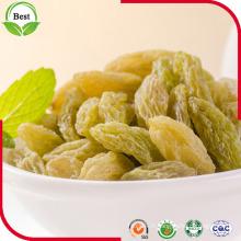 Bonne qualité des raisins verts du Xinjiang pour l'exportation