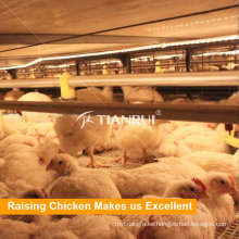 Broiler Chicken Battery Cage en venta en Bangladesh