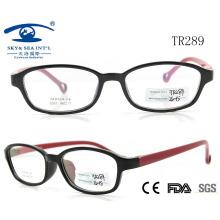 2015 Tr90 Cheap Classic High Quality Optical Frame (TR289)