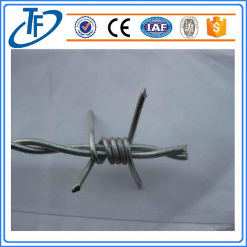12-1 / 2 Gigit 2-Point wire berduri