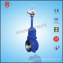 gate valve a216 wcb