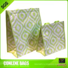 Выдвиженческий мешок tote охладителя (КЛЫ-ЦО-0062)