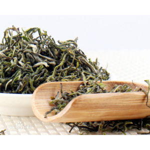 High Mountain Yellow Tea Weishan Maojian