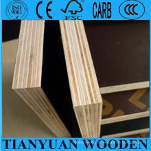 Contraplacado de madeira para construção