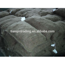 chinese chestnut 5kg bag Middle East