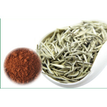 Natural Plant Extract Tea Polyphenol