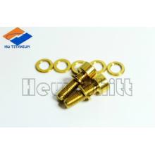 goldener Gr5 Titanbolzen mit Unterlegscheibe