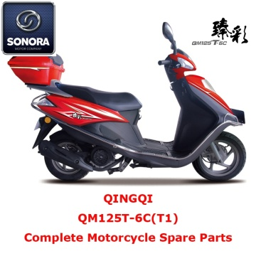 Qingqi QM125T-6C (T1) ricambio scooter completo