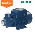 Chimpanzé Qb60 0.5 HP Pequeno Irrigação Elétrica Bomba De Pulverização De Água