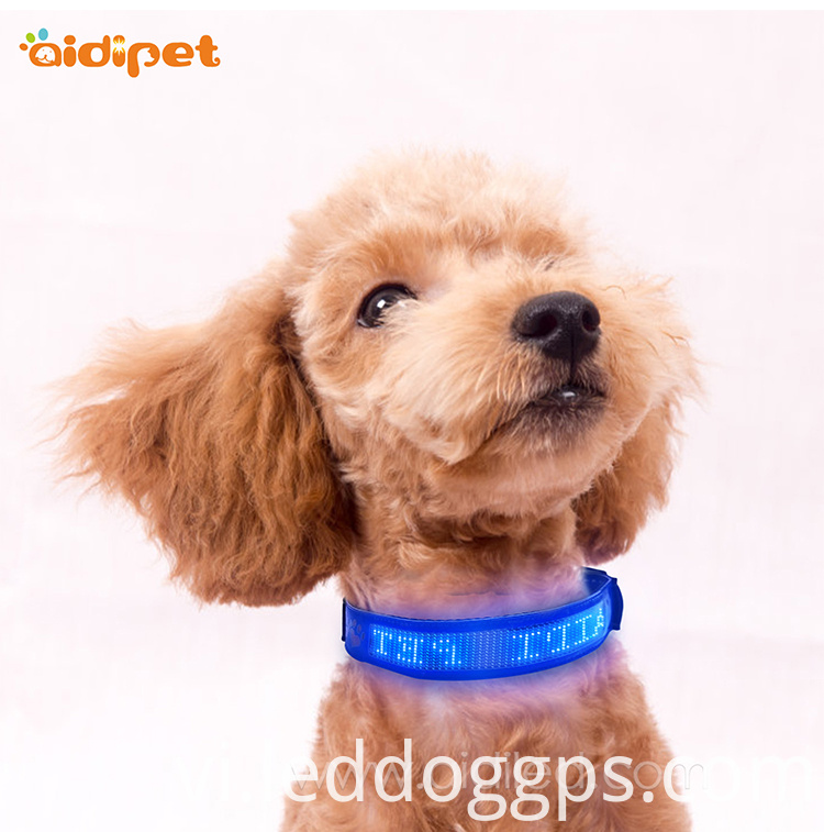 Blue PU Dog Collar