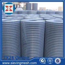 Galvanized Steel Welded Mesh