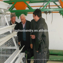 Ghanéen à vendre à chaud des cages de poule pondeuses / cage de poule pour volaille