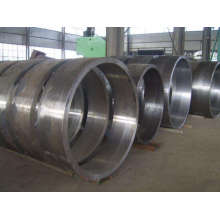 Brida de forja de gran diámetro de hasta 10 m