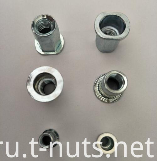 Screw Thread Blind Rivet Nut