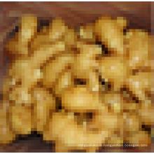 Variétés de gingembre
