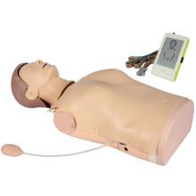 Consciousness Judgement Advanced Medical First Aid Training Education Manikin