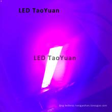 UV LED Lamp 395nm 200W LED Curing Light