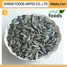 Sunflower Seeds Market Price and Chinese Sunflower Seeds