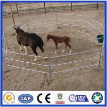 Trade Assurance Galvanizado Pipe Livestock Metal Corral Fence Painéis para Cavalo