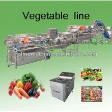 Ligne automatique de transformation des légumes / salade / IQF