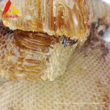 Peigne de miel naturel de haute qualité