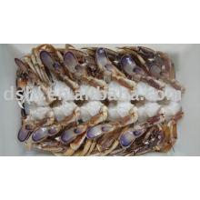 Frozen Clean Sand crab body