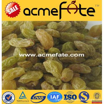 Melhor preço de qualidade superior semeado \ passas (dourado, verde, sultana, secado ao sol)