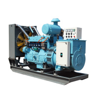 250KVA Gas Generator Sets for selling