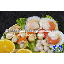 frozen scallop meat with roe and frill,IQF