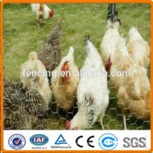Malla de alambre hexagonal galvanizada revestida del PVC para la jaula de las aves de corral
