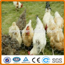 Rede de arame sextavada galvanizada revestida PVC para a gaiola das aves domésticas