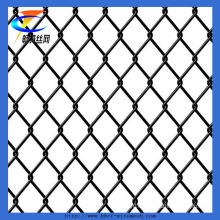 Wholesale Cheap Chain Link Fencing (CT-35)
