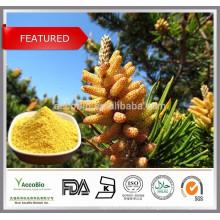 Top quality Food grade Cell wall broken Pine pollen powder, Pure Pine pollen