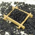 HPS Small Black Beans (GF3)